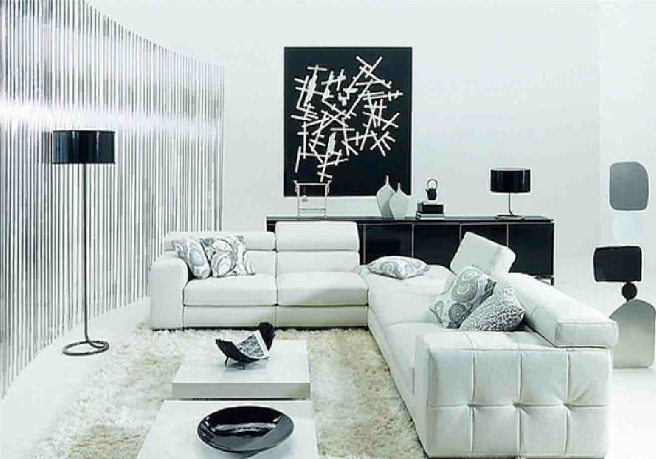 17 Inspiring Wonderful Black and White Contemporary Interior Designs ...