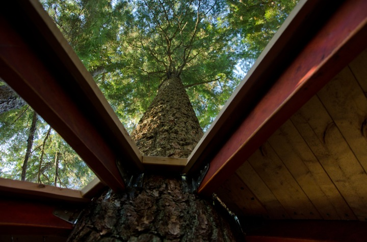 view from the Experimental Living In The Forests of Canda-The HemLoft by Joel Allen alternative from modern mansions (1) above