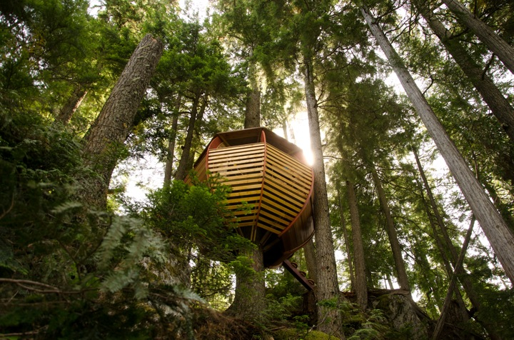 Experimental Living In The Forests of Canda-The HemLoft by Joel Allen alternative from modern mansions (1)