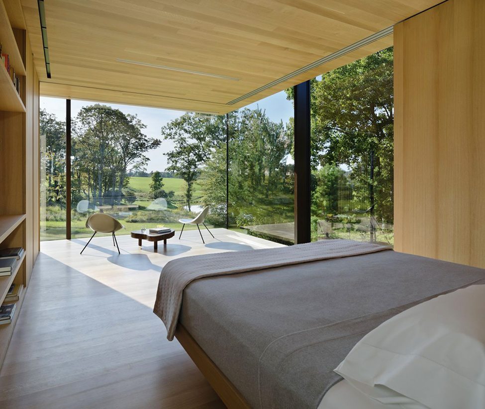 LM Guest House by Desai Chia Architecture in New York-Contemporary Farnsworth Copy (21)