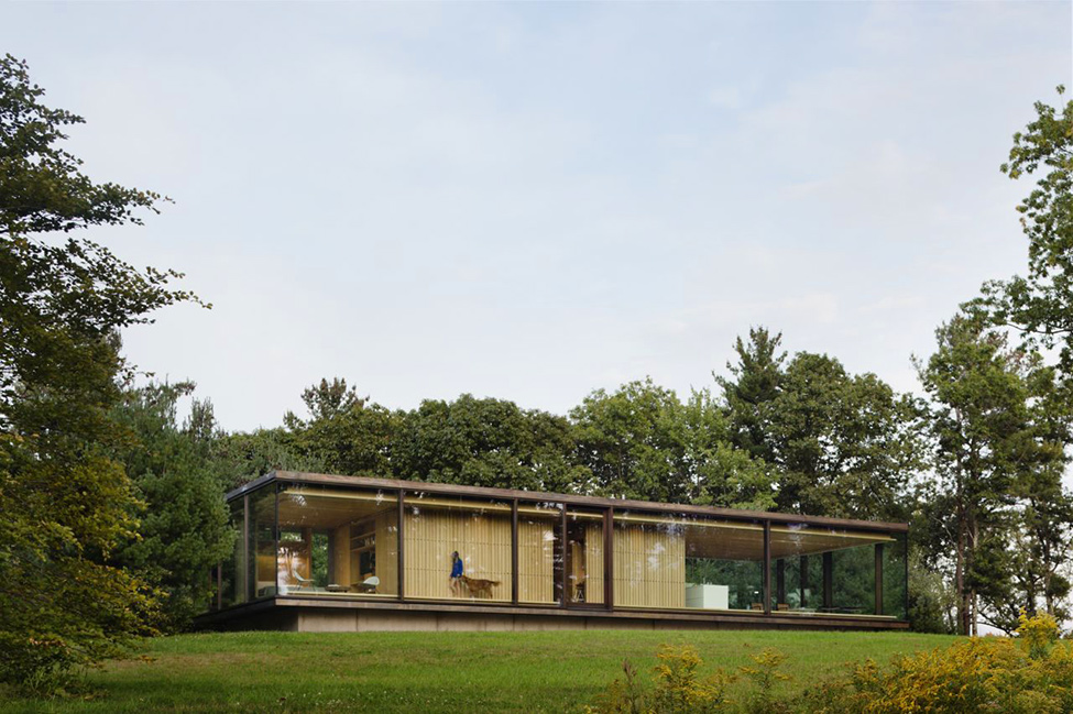 perspective view over LM Guest House by Desai Chia Architecture in New York-Contemporary Farnsworth Copy (21)