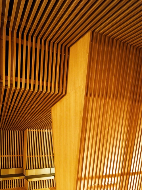 Thermalbad Zürich-Transforming a Brewery Into a Spa wood design