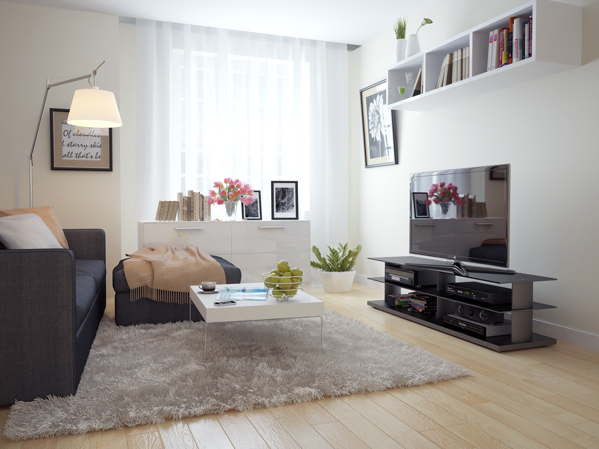 cozy atmopshere created by the usage of white interior design with accents