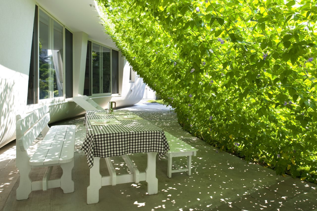 outdoors dinning are covered by green wall in stark white Fluid Organic & Sustainable Assets Featured In a Japanese Home by Hideo Kumaki Architect Office