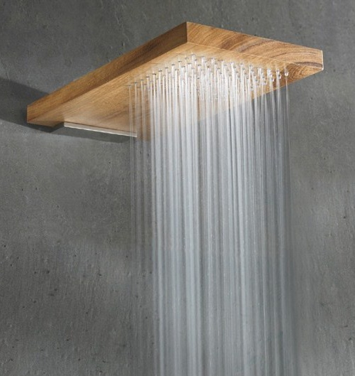 amazing shower 53 Excellent Unusual Interior Designs Meant to Feed Your Imagination  modern mansion wierd interior designs homesthetics (25)