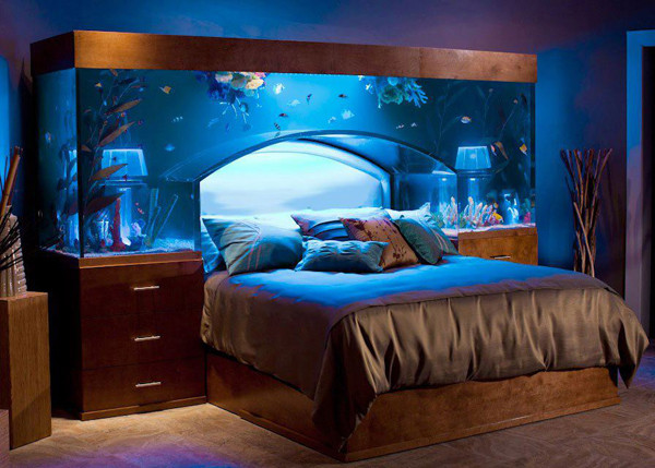fishtank above the bed an extraordinary way to illuminate your head at night with nature