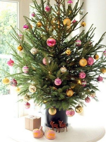 Beautiful Christmas Trees to Cheer Your Holidays small tree