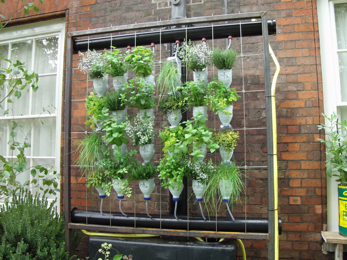 plants on Creative & Inspiring Modern Ideas of How To Recycle Plastic Bottles  homesthtics (25)