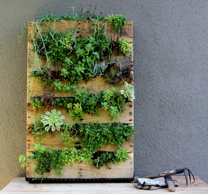 plant support Creative & Inspiring Modern Methods of How to Recycle Wooden Pallets homesthetics (1)