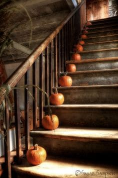 DIY  Welcome The Fall With Simple And Efficient Staircase Décor Homesthetics  (5)