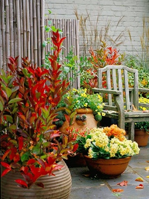 red green yellow DIY -Welcome the Fall with Warm and Cozy Patio Decorating Ideas homesthetics (41)