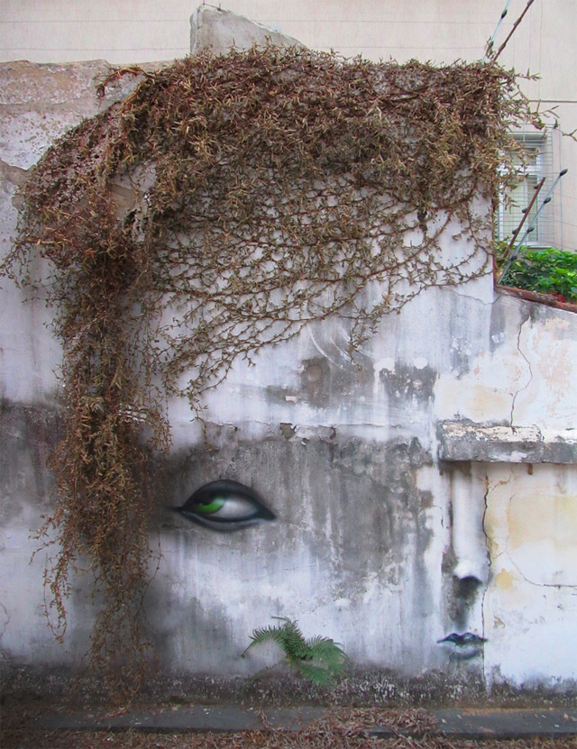vegetation and wall instalation Experimental Distorted Street Faces by Andre Muniz Gonzaga homesthetics (1)