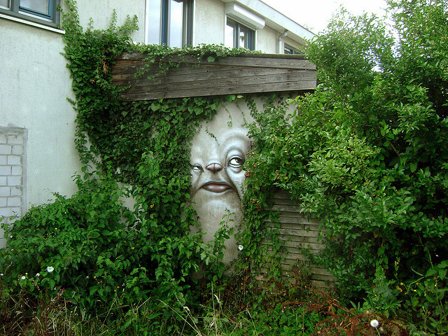 face trapped in vegetation Experimental Distorted Street Faces by Andre Muniz Gonzaga homesthetics (1)