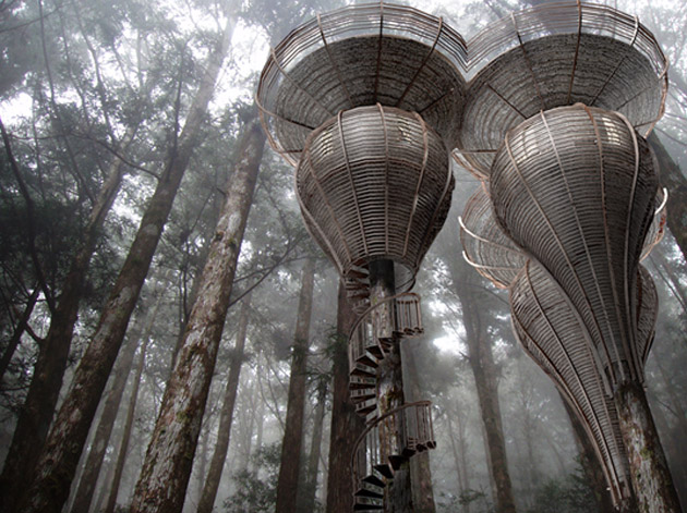 Roost Treehouse by Antony Gibbon  ground level view