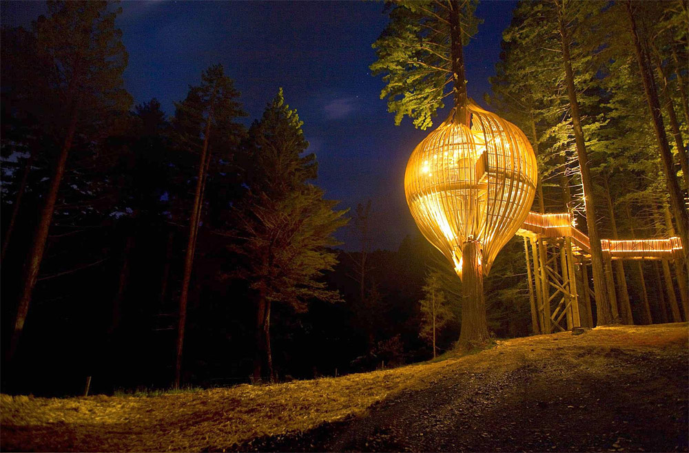 Up in a Tree by Pacific Environments NZ Ltd lighting