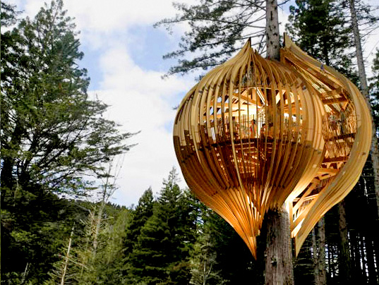 Up in a Tree by Pacific Environments NZ Ltd cocoon shape