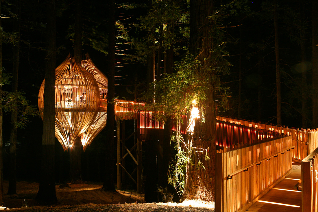Up in a Tree by Pacific Environments NZ Ltd timber structure