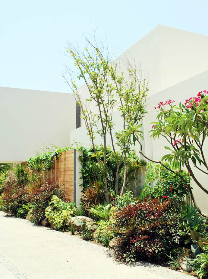 superior high end luxurious backyard landscaping