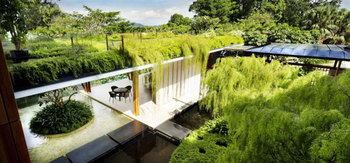 vegetation over the cantilever Extraordinary Luxurious Modern Mansion Embedded in Vegetation- The Willow House by Guz Architects homesthetics dream home (1)