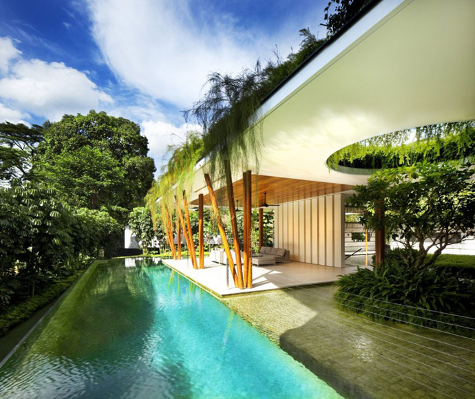 swimming pool Extraordinary Luxurious Modern Mansion Embedded in Vegetation- The Willow House by Guz Architects homesthetics dream home (1)