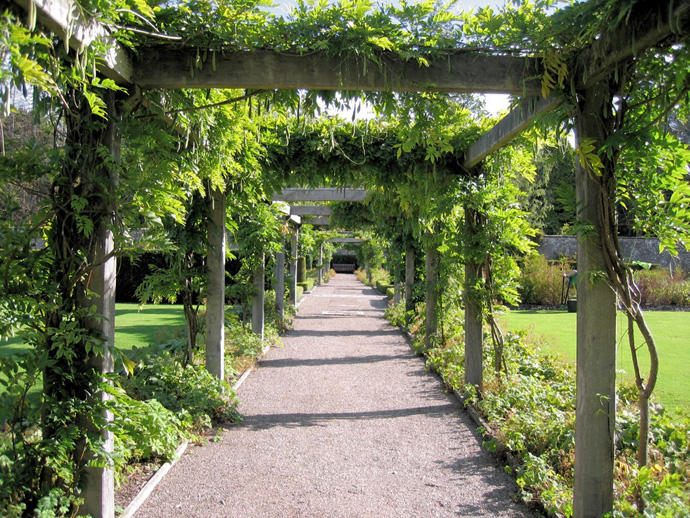 wine heave 40+ Pergola Designs Meant to Transform Your Backyard Landscaping Into a Green Heaven