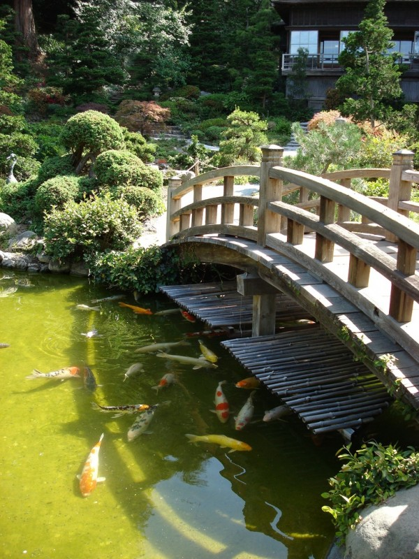 Backyard landscaping ideas japanese gardens for Pond shade ideas