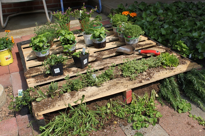 CreativeInspiring-Methods-of-Recycling-Wooden-Pallets-Into-Your-Own-Garden