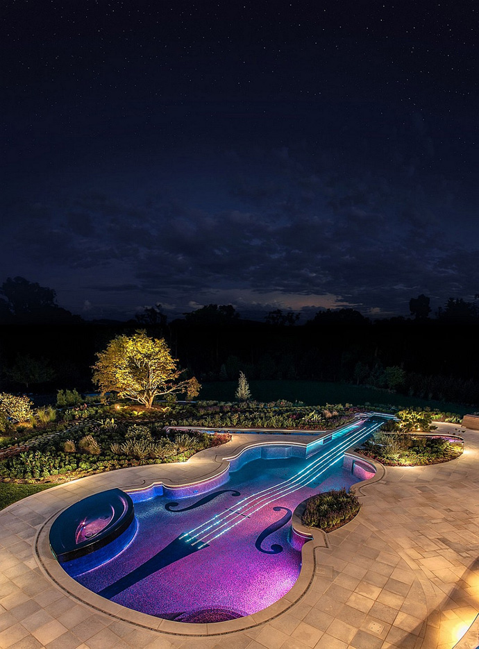 Backyard-Landscaping-Ideas-Swimming-Pool-Forged-as-a-Stradivarius-Violin from above