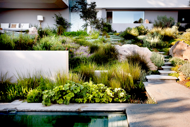 Bridle Road House by Antonio Zaninovic Winning 2010 Honor Award from the American Society and Landscape Architects