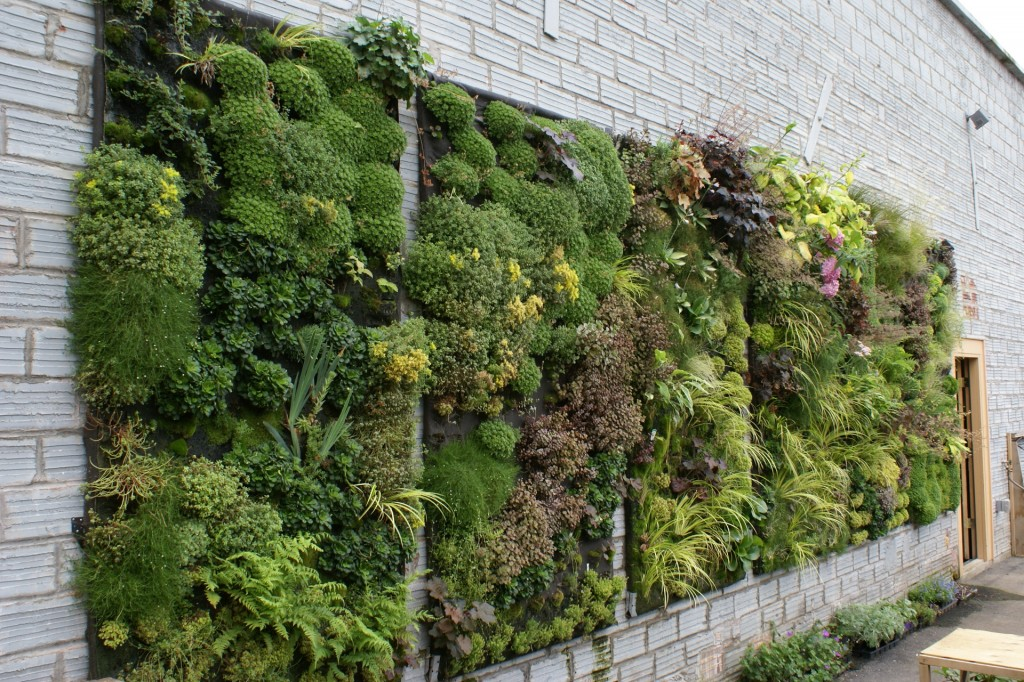 Green Everywhere- Vertical Gardens
