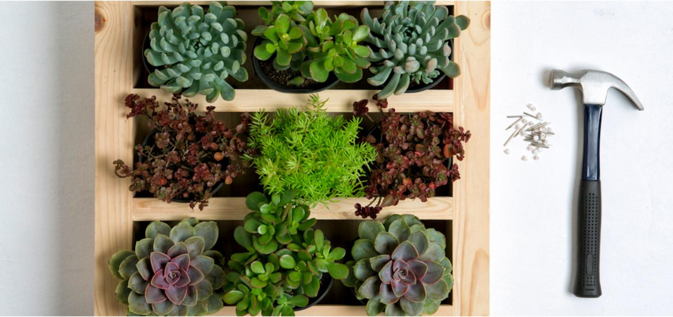 Green Everywhere- DIY Vertical Gardens - Homesthetics - Inspiring ...