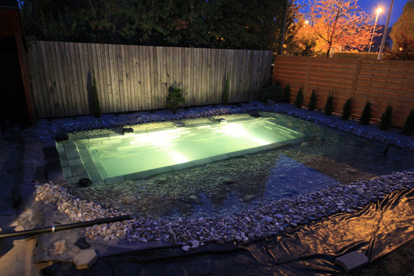 Ingenious Backyard Landscaping Design DIY Project-Swimming Pond Homesthetics (16)