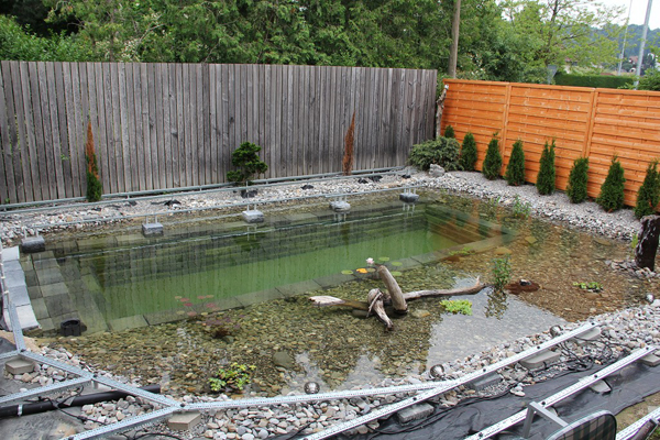 Ingenious backyard landscaping design diy project swimming for Diy garden pond ideas