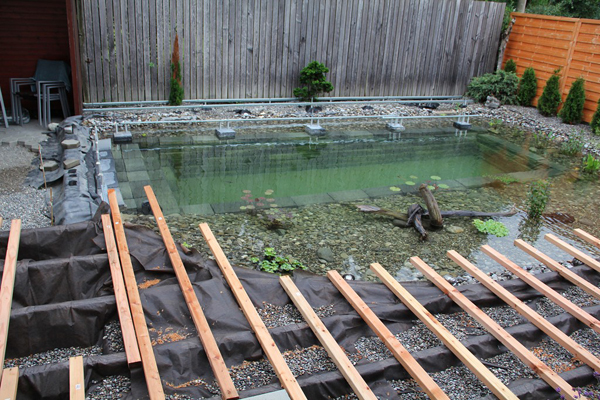 Ingenious Backyard Landscaping Design DIY Project-Swimming Pond Homesthetics (18)