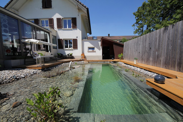 Ingenious Backyard Landscaping Design DIY Project-Swimming Pond Homesthetics (23)