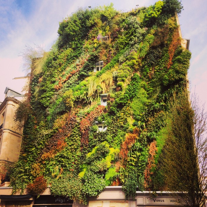 10 Things You Should Know About Sustainable Architecture (11)
