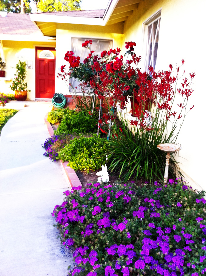 red and purple CreativeInspiring-Ideas-of-How-to-Make-Your-Garden-a-Green-Paradise