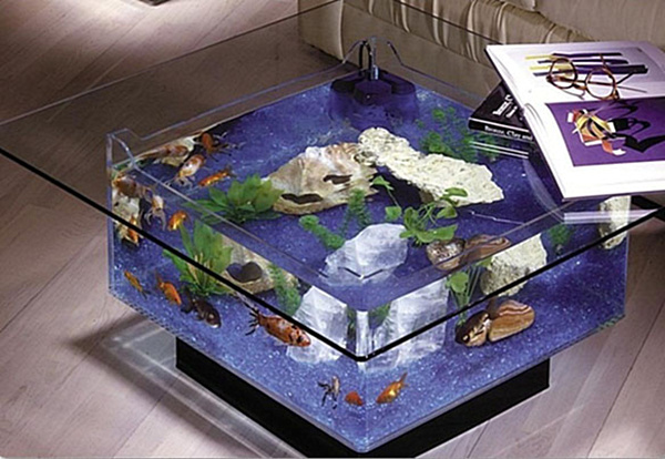 Acrylic coffee tables showcase for your interior design for Showcase table design