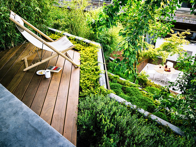 superb steps in Backyard-Landscaping-Ideas-Hilgard-Garden-by-Mary-Barensfeld-Architecture