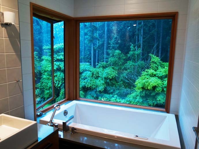 bathroom design with view to the forest