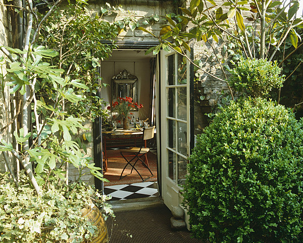 Green Heaven and French Doors In a Magnificent Snapshot