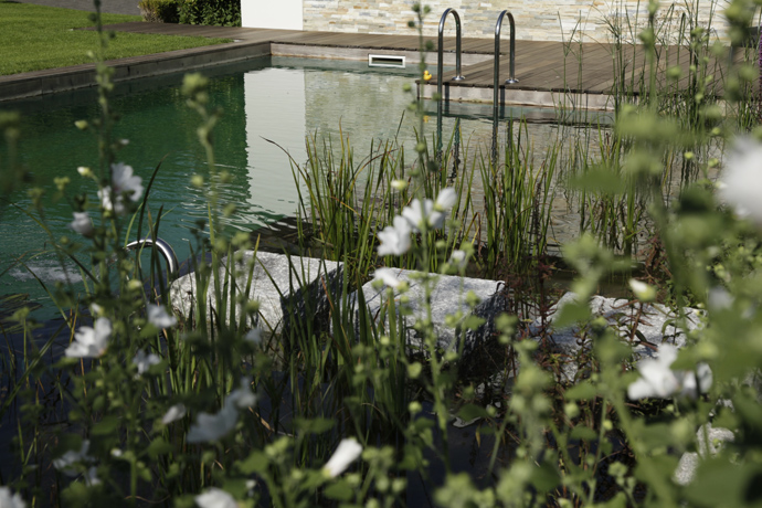 detail shot Natural-Swimming-Pools-by-Biotop-The-New-Eco-Trend
