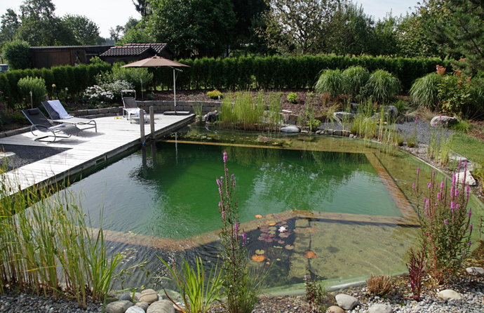 Natural Swimming Pools by Biotop-The New Eco Trend ...