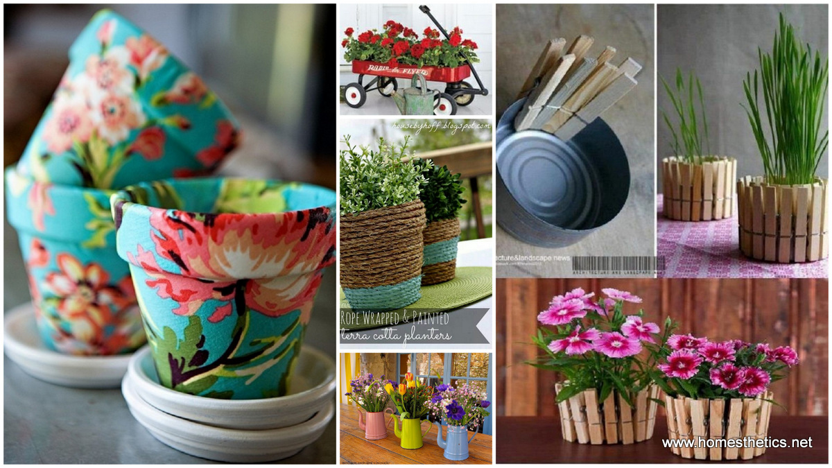 Creative DIY Herbs & Flower Pots for Your Home