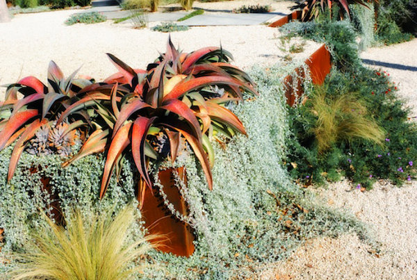 homesthetics-Terraced-xeriscaping-in-a-modern-yard