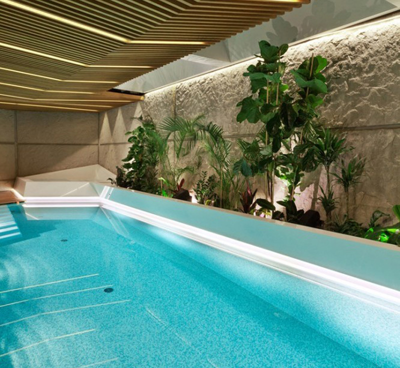 super swimming pool with greenery extension