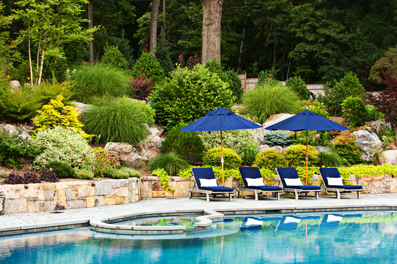 Small Backyard Landscaping Inspiration Pack Swimming Pools