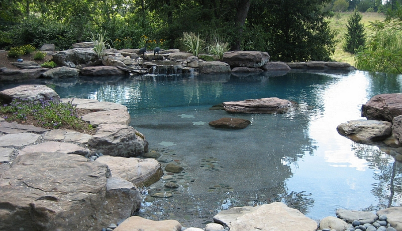 Natural and Serene Look in a Pool with Waterfall