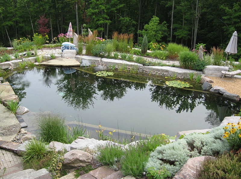 A Natural Refreshing Pool That Replicates a Pond in The Forest