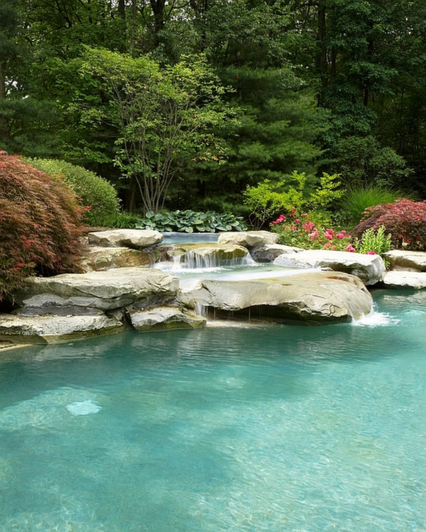 Waterfall Pool Surrounded by a Natural Scenery